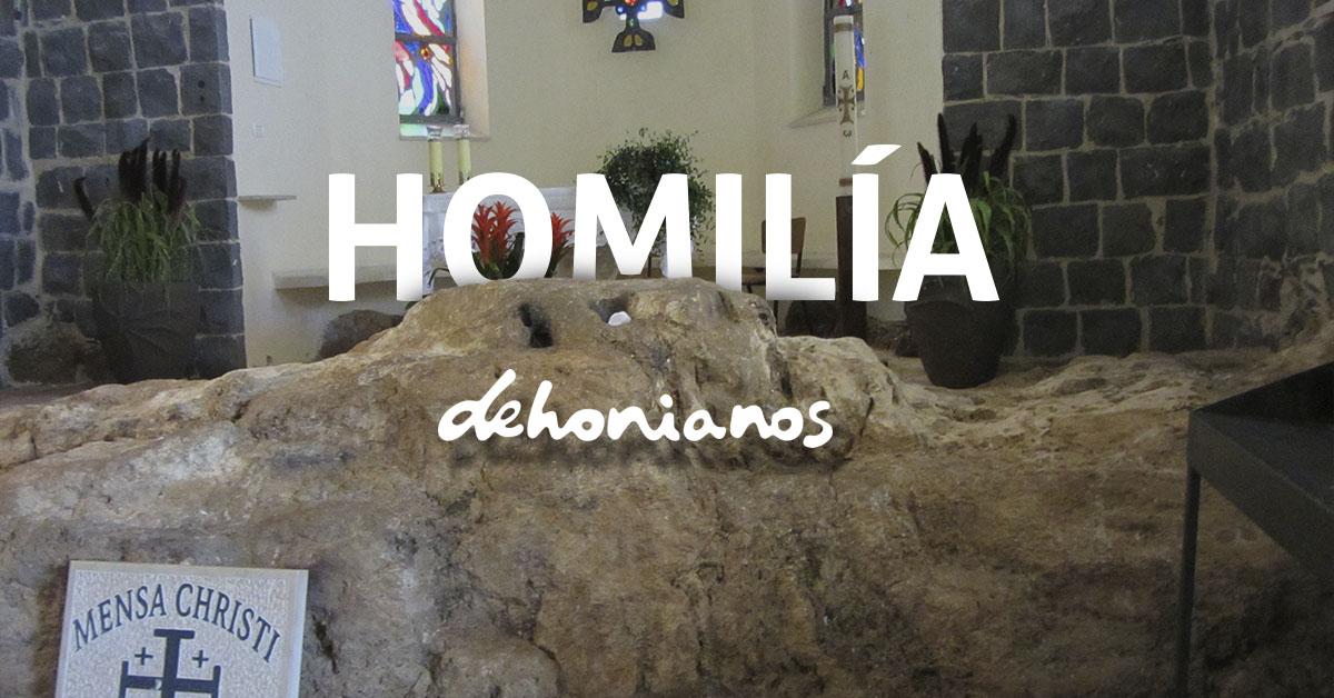 Homilía dehonianos